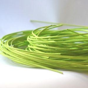 Peddigrohr grün