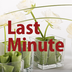 Last Minute Angebote